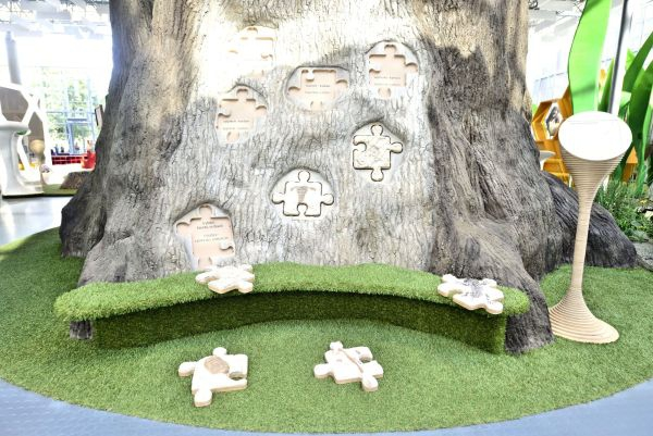 atrakcja-wystawa-drzewo-zycia